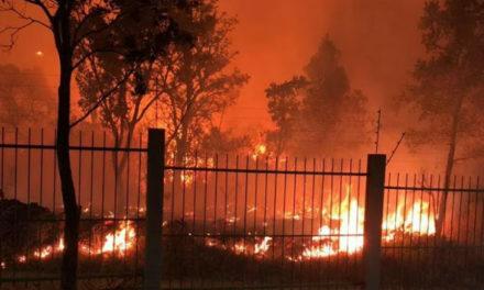 Incêndio atinge vegetação em Sobradinho