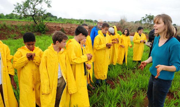 Crianças da rede pública de ensino ajudam a plantar 1,5 mil mudas no Distrito Federal