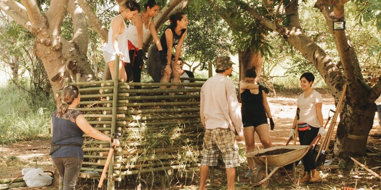 Mutirão constrói abrigo em terra indígena para militantes dos povos originários no DF