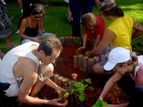 Curso de Jardins Terapêuticos ensina técnicas de plantio orgânico e soluções sustentáveis