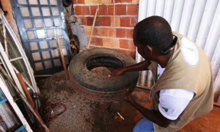 Distrito Federal tem surto de Dengue no inverno