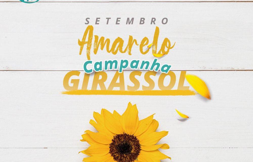 Campanha Girassol: IITS