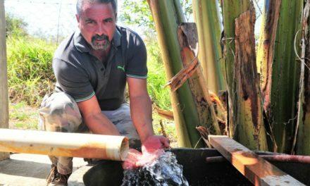 Após a crise, o futuro: como tornar de excelência a gestão da água?