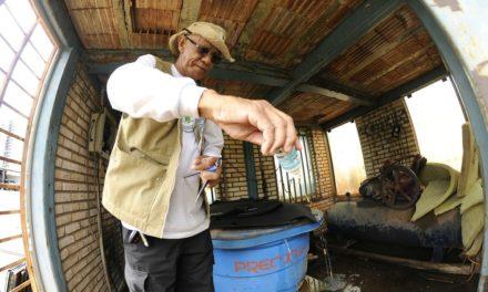 DF tem 50,4 mil casos de dengue e número de mortes sobe para 47