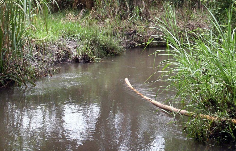 Sobradinho e Planaltina, no DF, poderão enfrentar rodízio no abastecimento de água