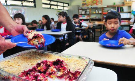 Agricultura familiar abastece 100% das escolas públicas