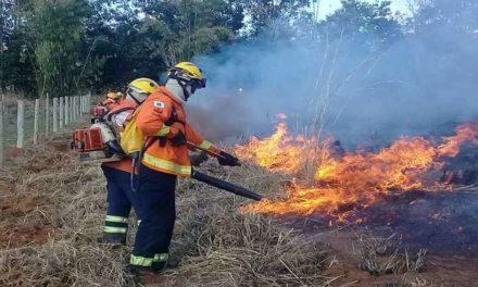 Incêndio em Sobradinho, no DF, atinge 120 mil metros quadrados de vegetação
