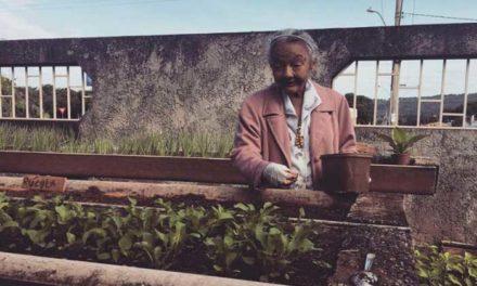 Departamento de História da UnB faz campanha interna de arrecadação para ajudar instituição de idosos