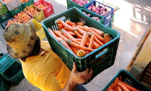 GDF aplica R$ 2 mi para compras da agricultura familiar