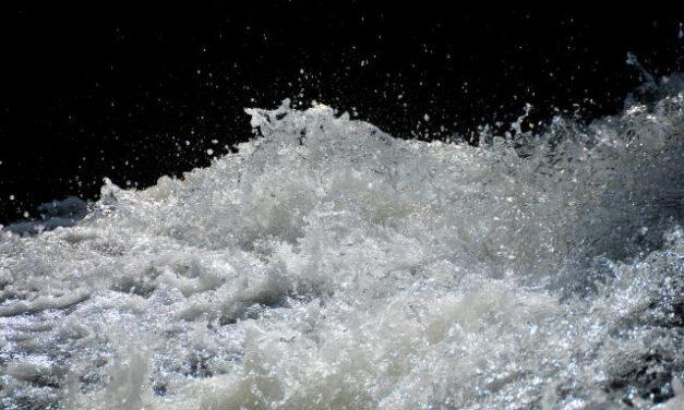 Artigo – Água na agricultura e produção de alimento